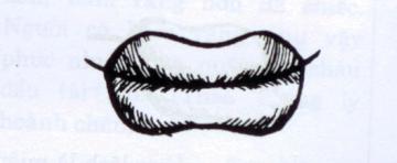 tướng đôi môi may mắn
