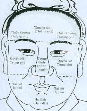 Tổng quát về tướng khuôn mặt