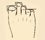 Độ dài ngón chân tiết lộ gì về tương lai của bạn?