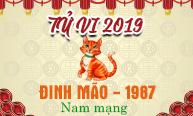 Xem tử vi tuổi Đinh Mão (1987) năm 2019 nam mạng